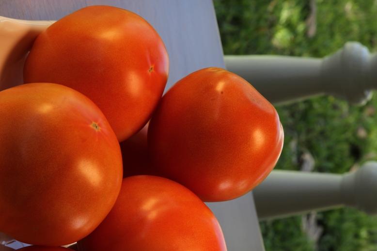 A comer tomates para mantener una buena salud