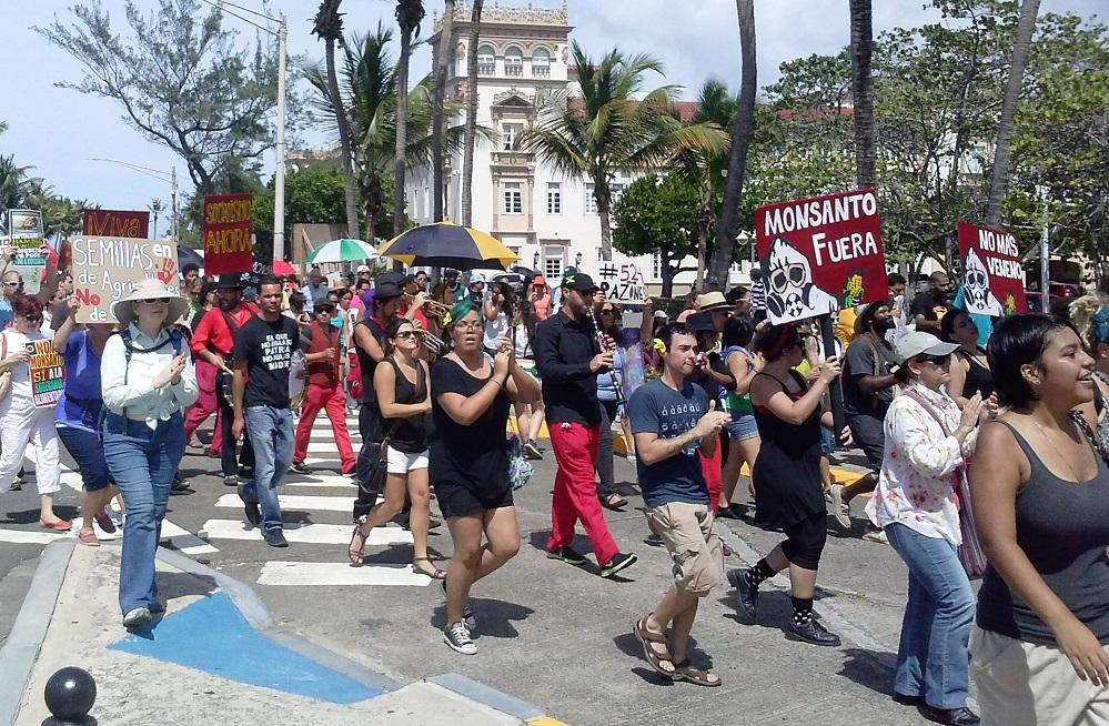 Marchan en contra de la compañía Monsanto